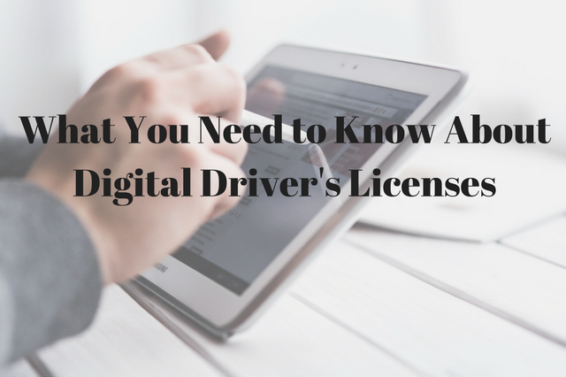 What You Need to Know About Digital Driver's Licenses