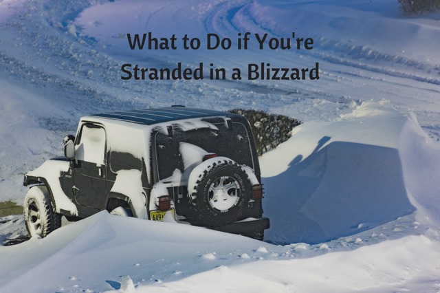 What to do if you're stuck in a blizzard.png