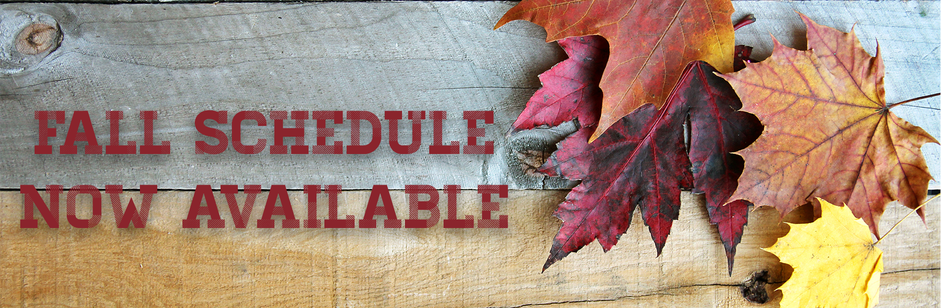 Driving Institute Fall & Winter Driving Schedule with Permit Test Tips